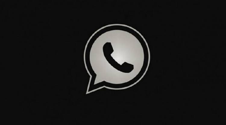 Activa el modo noche de Whatsapp