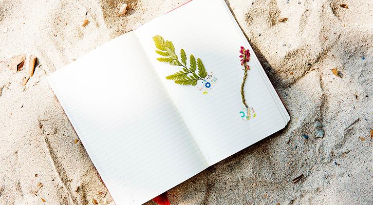 Los mejores trucos para desconectar en verano