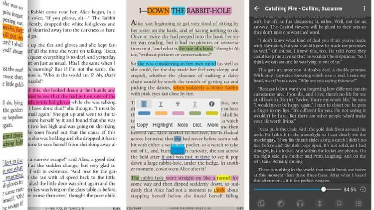 lector de libros electronicos smartphone