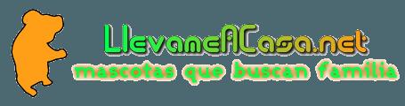 Llevameacasa.net, ejemplo de la internet solidaria - by Tony Ramos