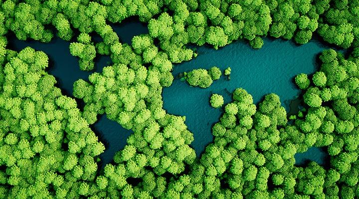 Día Internacional de la Preservación de la Capa de Ozono. Cómo ser una empresa responsable con el medioambiente