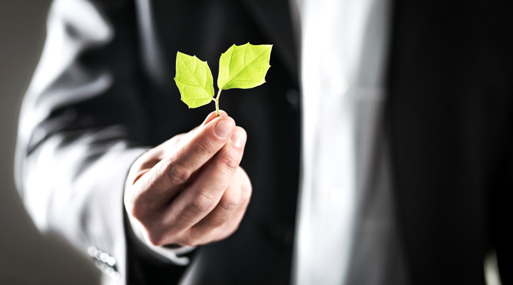 Marketing Social Corporativo: una estrategia de éxito para el futuro