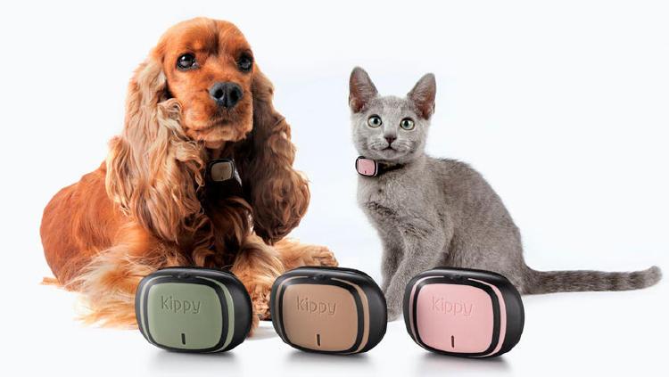 localizador gps perro gato