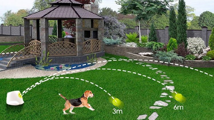 lanzador pelotas perro gadget