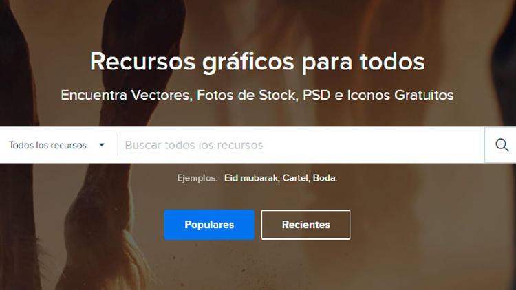web freepik