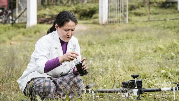 repartiendo medicinas con un dron