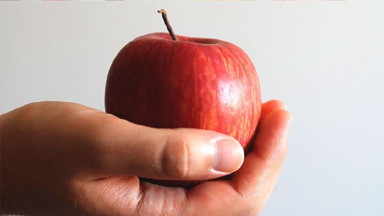 foto comida manzana fruta