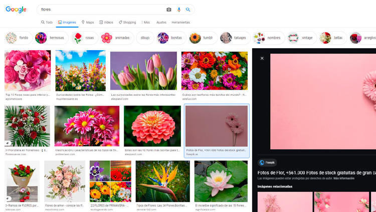 buscar imagen google