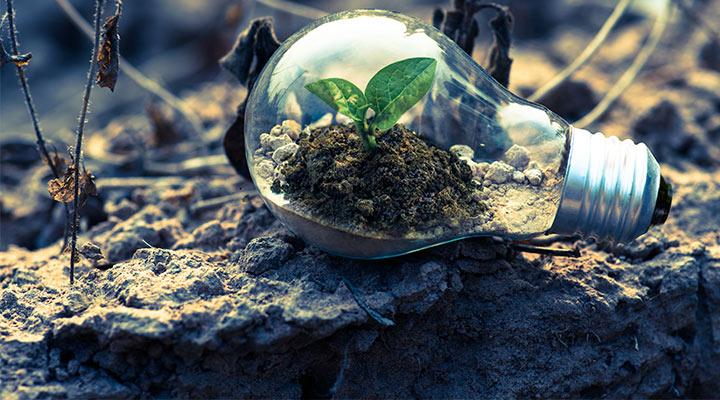 Las empresas españolas que ayudan a proteger el medio ambiente