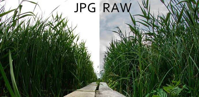 ¿Es útil el formato RAW en los móviles? Todo lo que debes saber