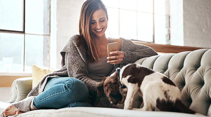 Apps para los amantes de los perros
