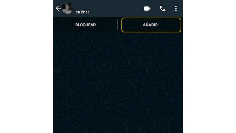 nuevo contacto whatsapp