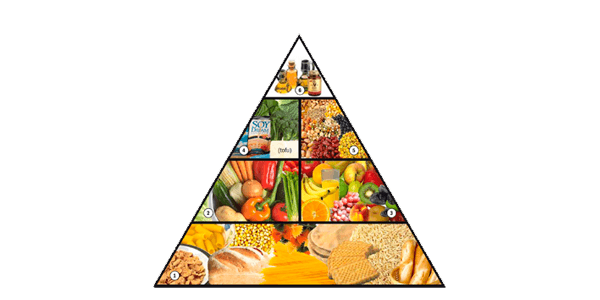 piramide maslow vegana app