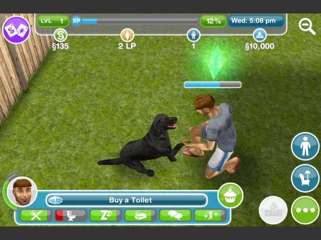 sim cuidando de su perro