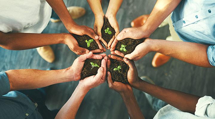 Día Mundial del Medio Ambiente. Consejos para ser una empresa sostenible
