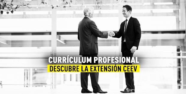 Currículum profesional CEEV