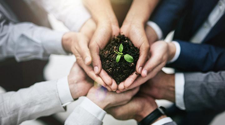 Día de la Tierra. Acciones para ser una empresa eficiente