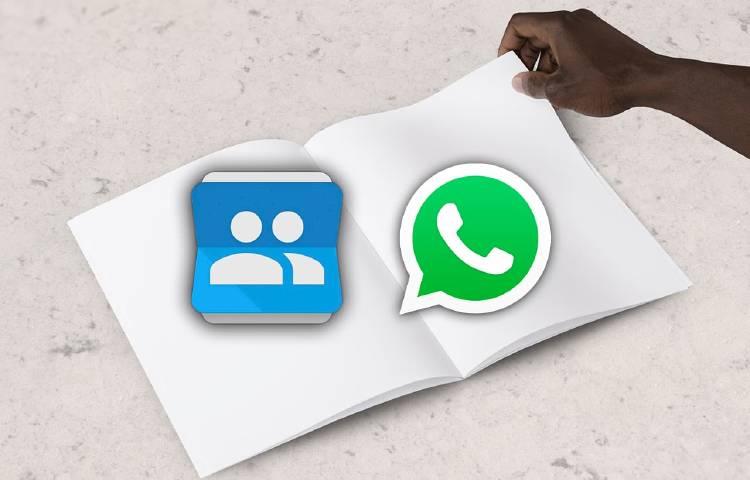contactos whatsapp