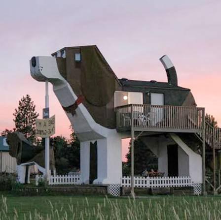 Casa con forma de perro 2